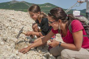 Mont Lyall – Mine d'agates et de géodes