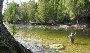 Pêche au saumon – Rivière Sainte-Anne